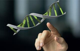Nέες εξελίξεις για τους γενετικά τροποποιημένους οργανισμούς